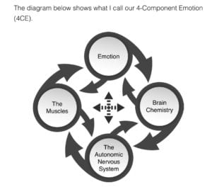 4 components of emotion